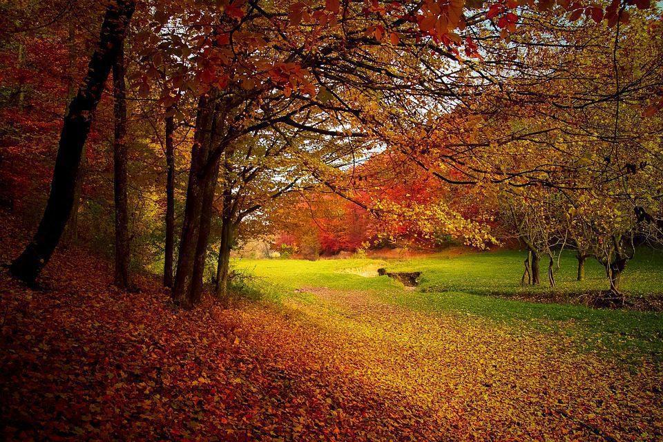 Einkaufssonntag mit Herbstbummel